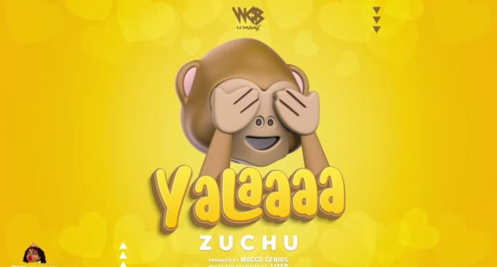 Zuchu - Yalaaaa   Audio